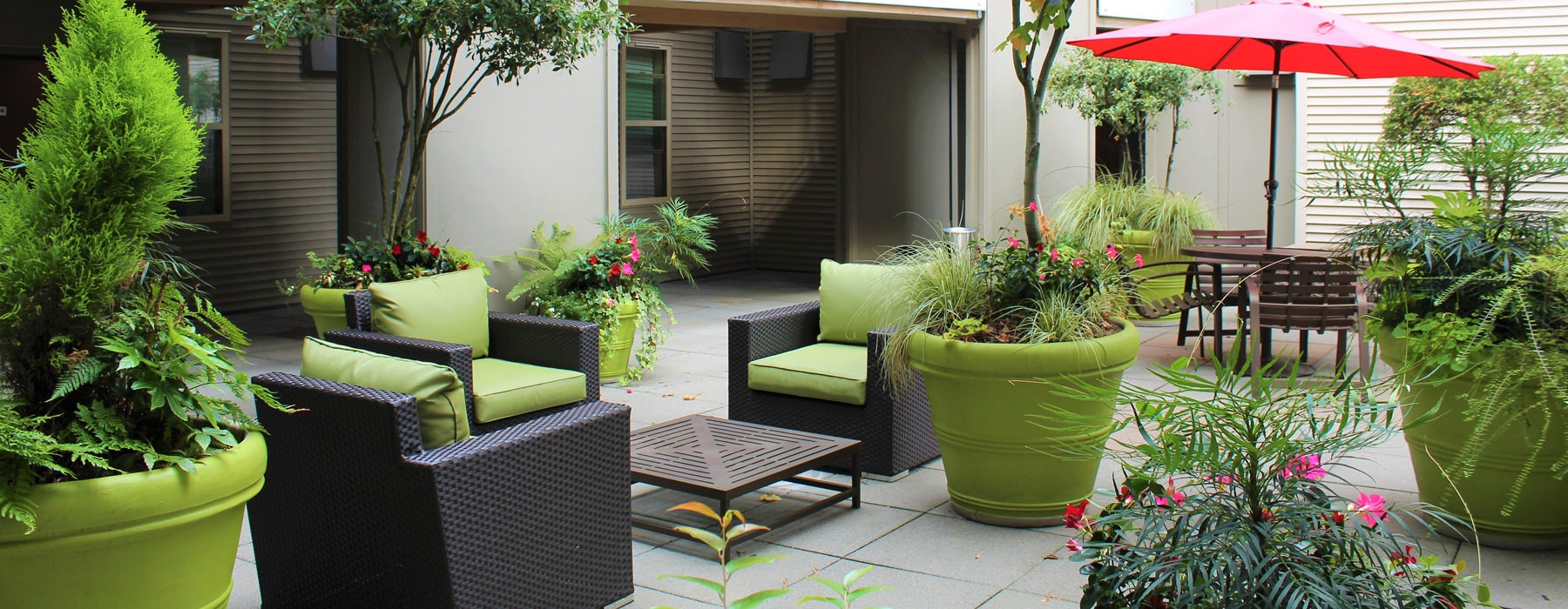 Outside patio seating with plush chairs and potted trees