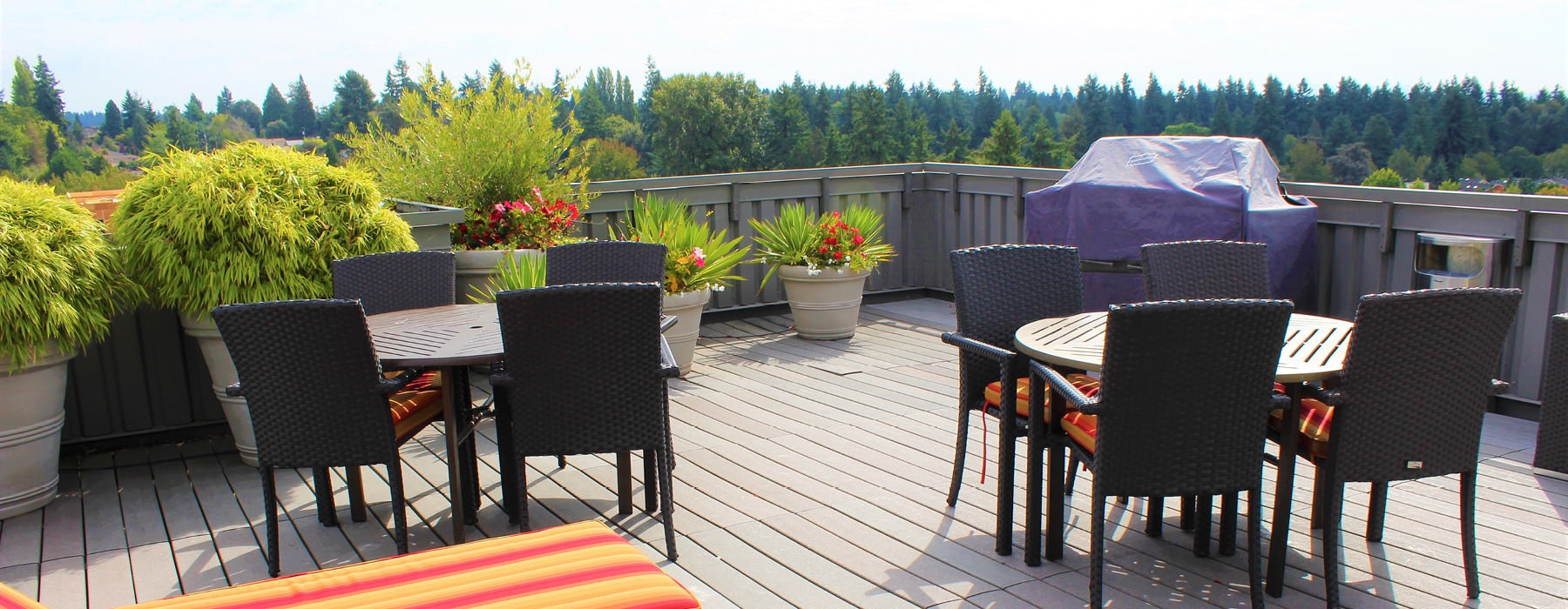 open rooftop deck with wooded neighborhood views